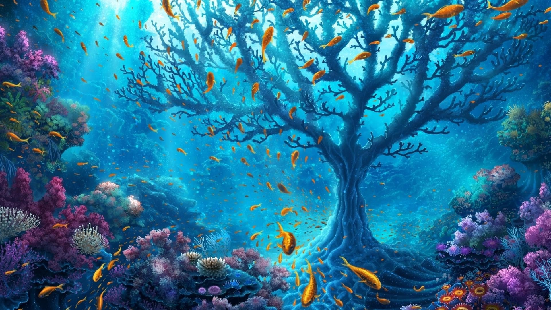 Underwater world hd nature 4k wallpapers images - Underwater desktop background ...