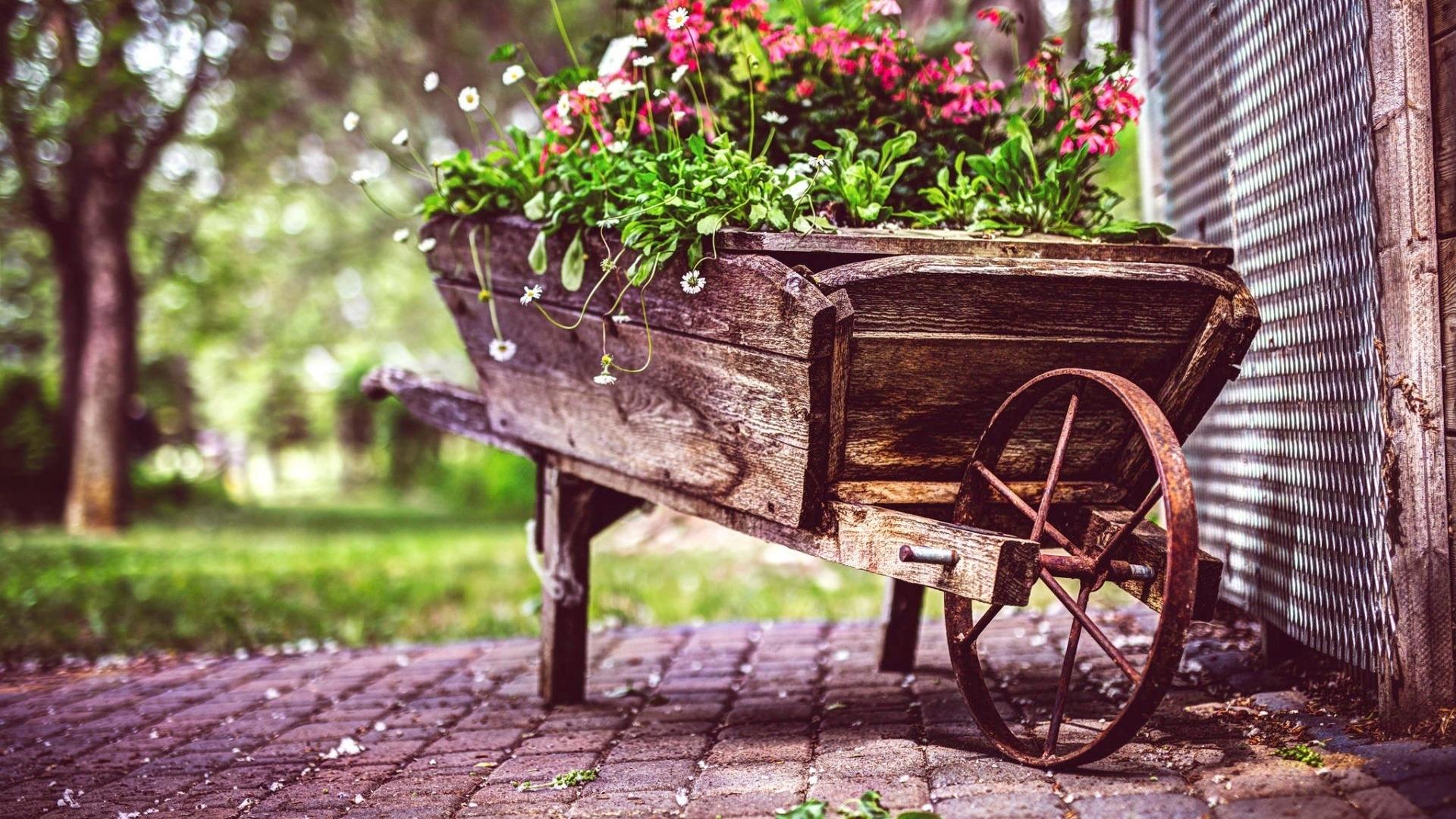 vintage-flower-pot.jpg
