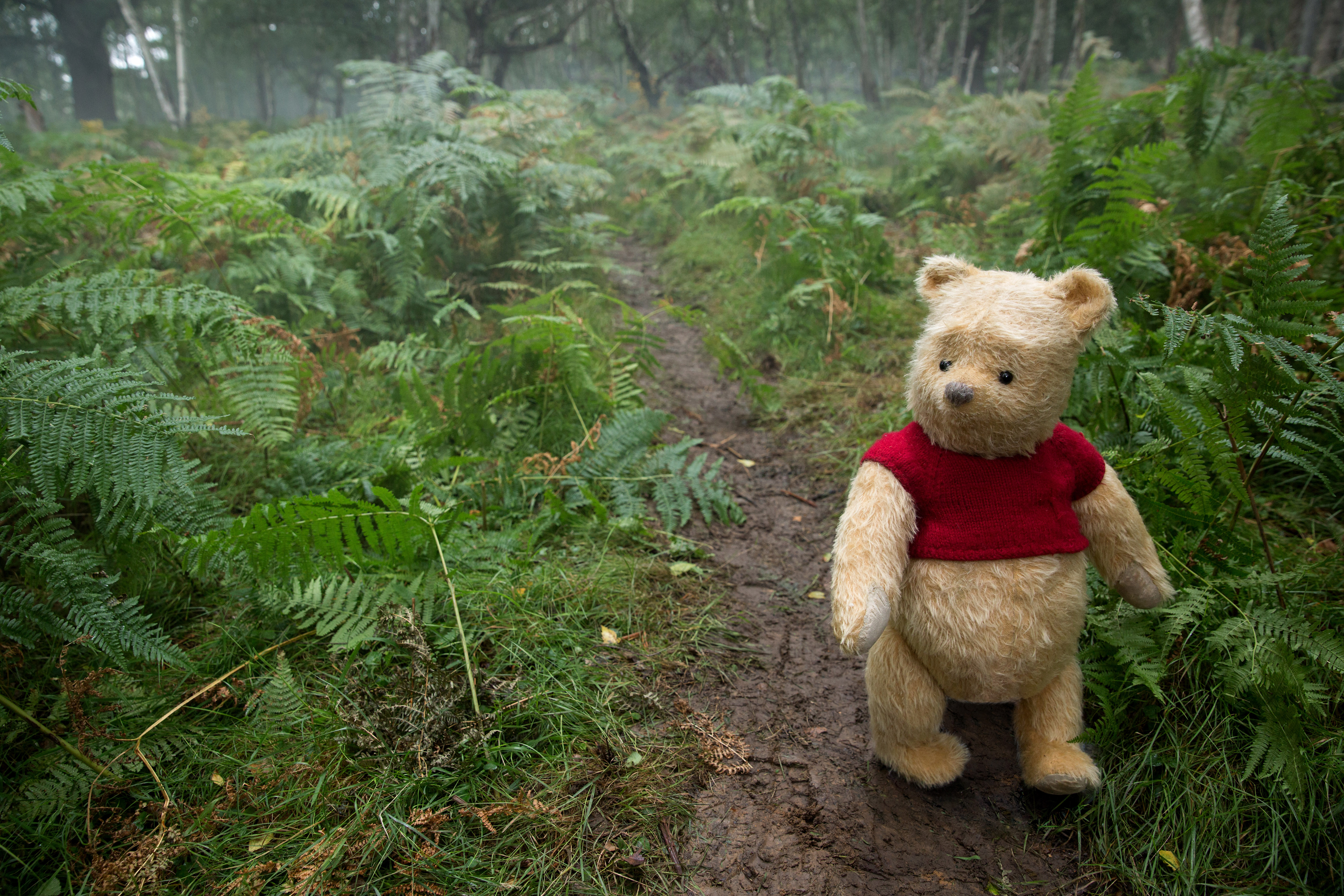 winnie the pooh in christopher robin movie 5k 2018 hd