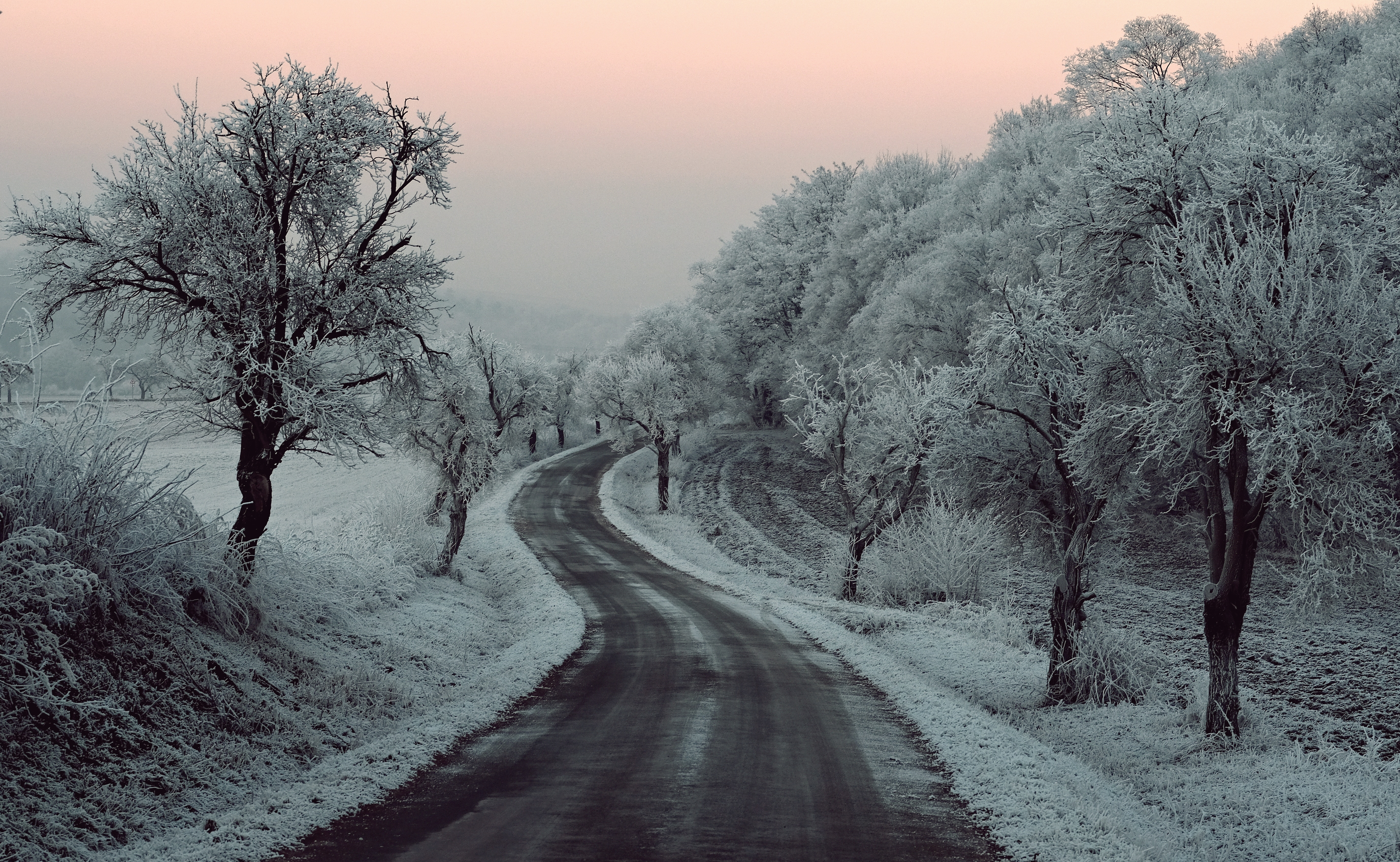 Winter Road Snow Frozen Trees On Sides 5k