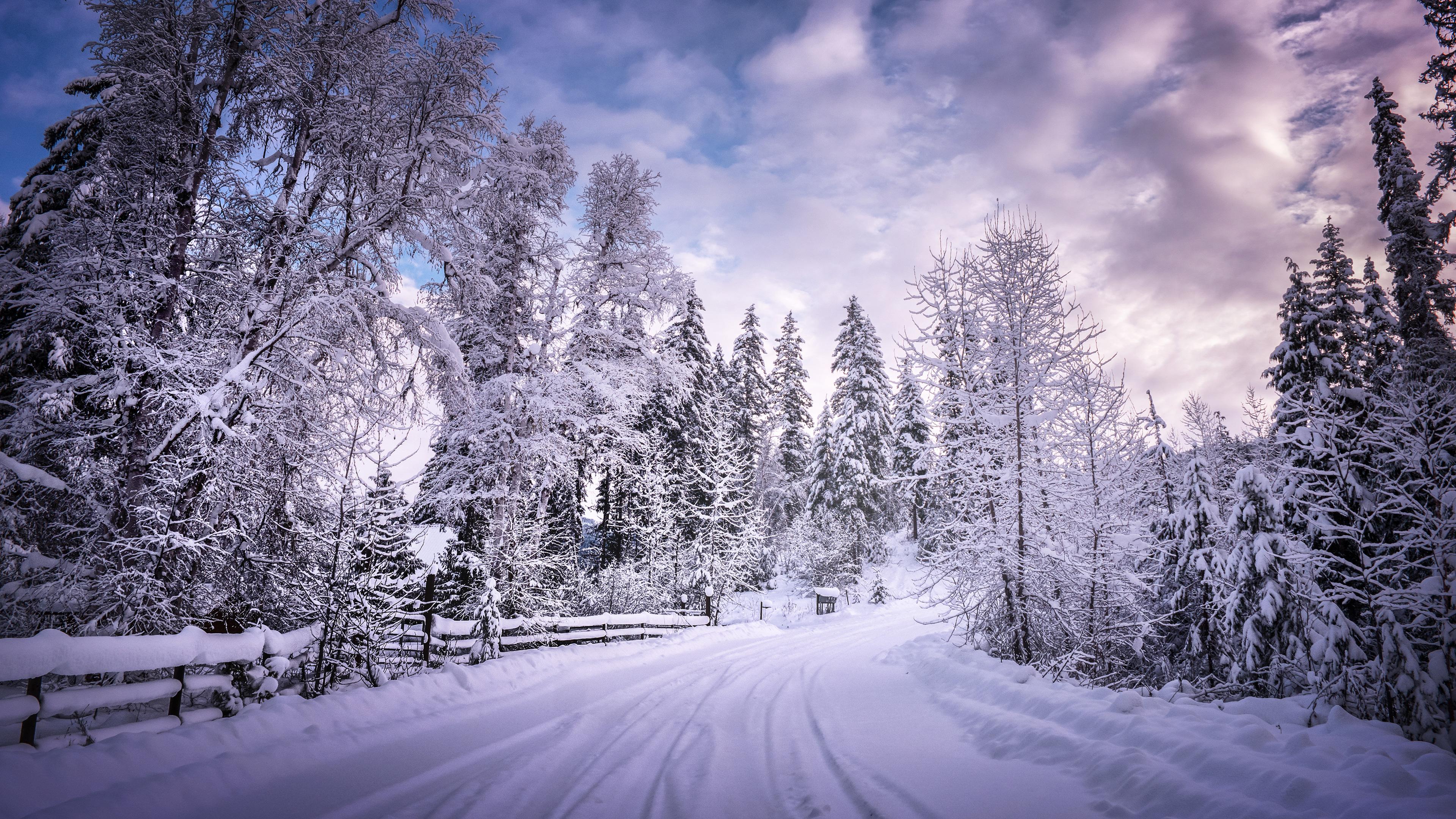 1680x1050 Winter Road Snow Trees White 1680x1050 Resolution
