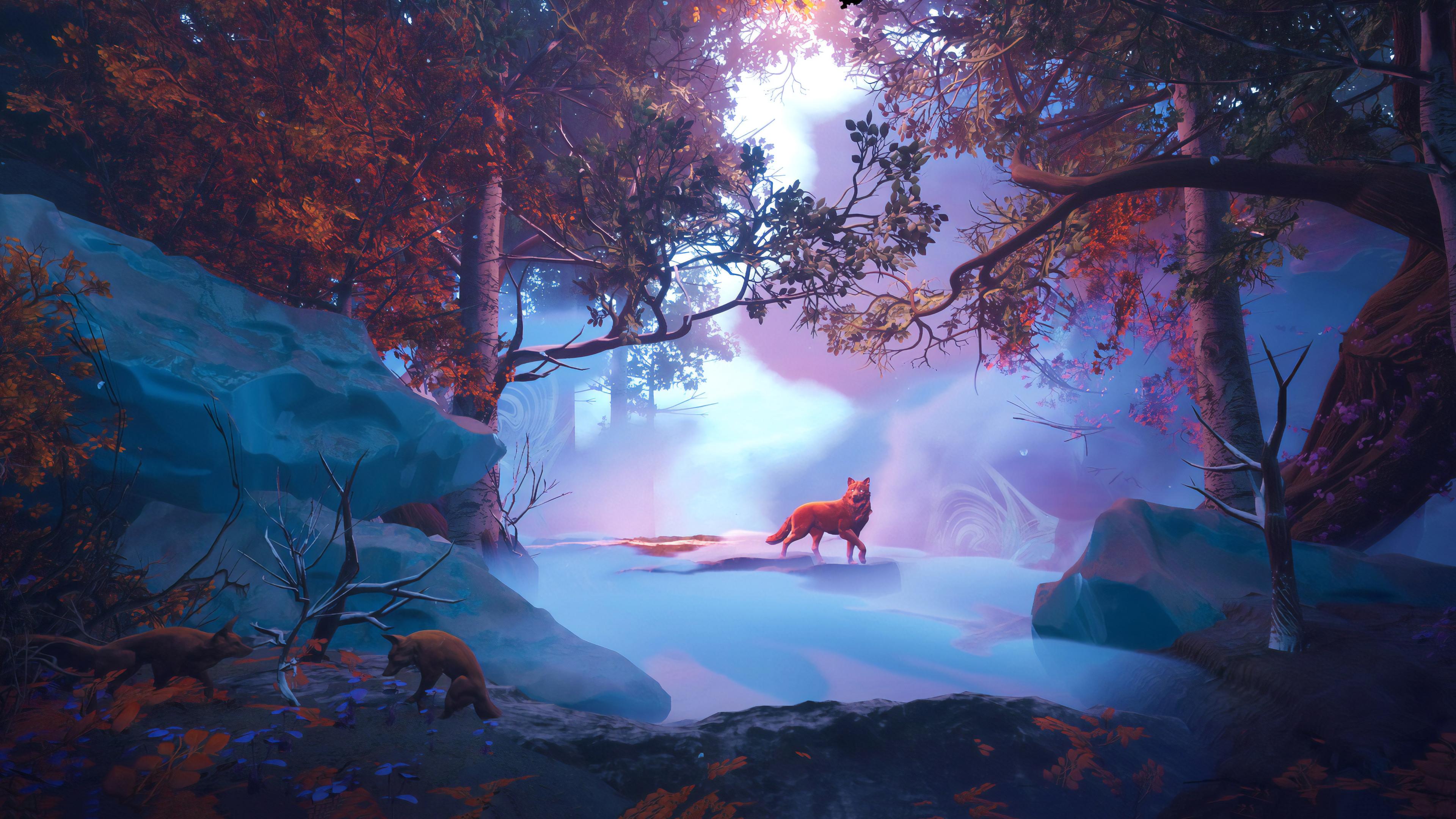 Forest Wallpaper 4k Wolf Nature Wallpaper