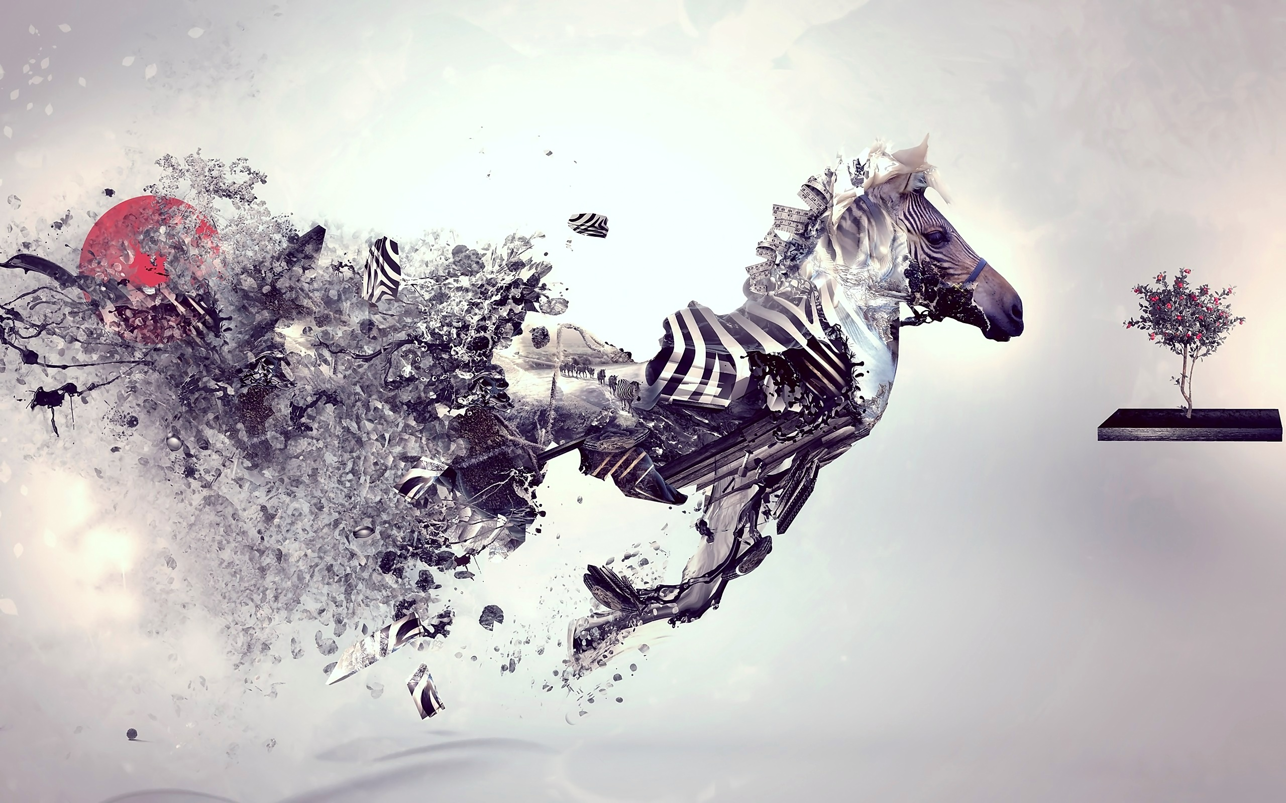 zebra abstract art hd abstract 4k wallpapers images backgrounds