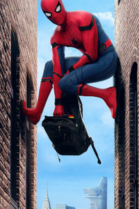 2017 Spiderman Homecoming