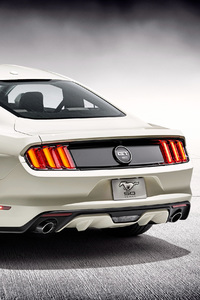 2018 Ford Mustang GT 50 Years Edition Rear