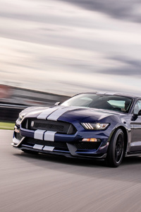 800x1280 2019 Ford Mustang Shelby GT350