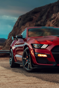 320x568 2020 Ford Mustang Shelby GT500