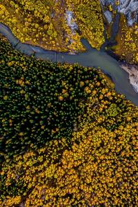 480x854 Aerial Photography Beauty In Nature Forest