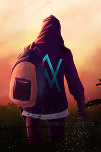 1125x2436 Alan Walker Artwork 5k