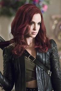 Amy Gumenick In Arrow