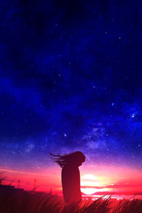 640x960 Anime Girl In Field Silhouette Sunset
