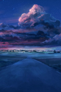 1080x2160 Anime Night Scenery