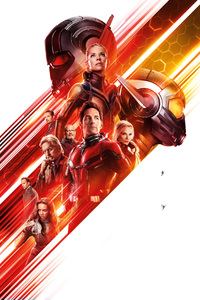 Ant Man And The Wasp 12k