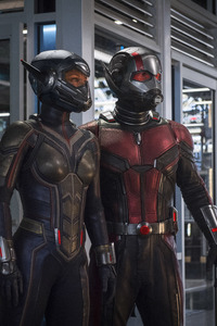 480x800 Ant Man And The Wasp 2018 5k