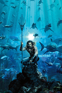 360x640 Aquaman Movie Poster 2018