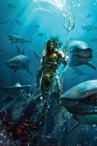 360x640 Aquaman The King
