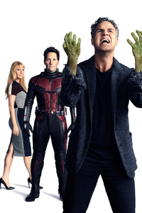 Avengers Infinity War Ant Man Hulk Mantis Pepper Potts Black Panther