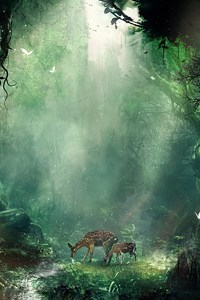 540x960 Bambi Jungle