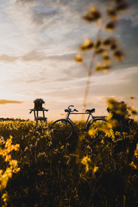 640x960 Bicycle In Field