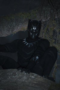 Black Panther 2018 T Challa