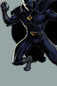 Black Panther Fictional Superhero 2