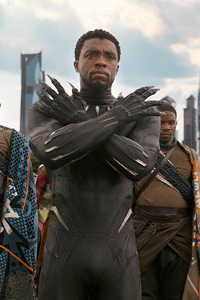 Black Panther In Avengers Infinity War 2018