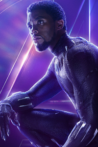 Black Panther In Avengers Infinity War New Poster
