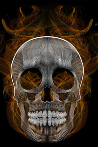 360x640 Blend Skull Vector Illustration