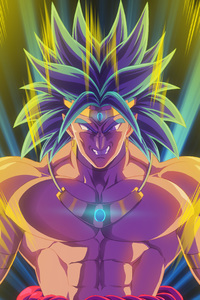 Broly Dragon Ball Z Anime Artwork