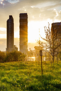 1440x2560 Building Cityscape Grass Sunbeam Sunrise