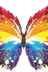 Butterfly Abstract Colorful