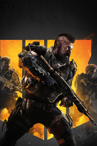 1080x2280 Call Of Duty Black Ops 4 2018