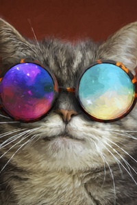 720x1280 Cat Glasses Party Cool Painting