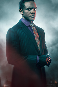 1440x2560 Chris Chalk As Lucius Fox In Gotham Season 5