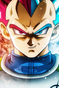 2160x3840 Dragon Ball Super Anime 5k