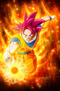Dragon Ball Super Super Saiyan Goku