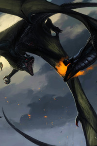 720x1280 Dragon Fighting Throwing Flame