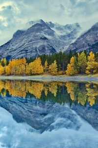 240x320 Fall Foliage Lake Mountain Nature Reflection