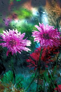 Flowers Behind Glass Drops