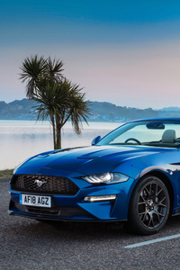 720x1280 Ford Mustang EcoBoost Convertible 2018 4k