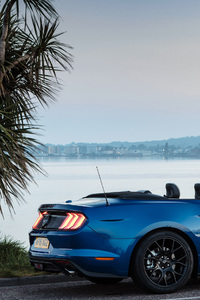 720x1280 Ford Mustang EcoBoost Convertible 2018