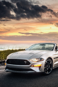 Ford Mustang GT Convertible 2019 4k