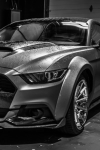 320x568 Ford Mustang Monochrome 4k