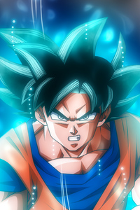 360x640 Goku Ultra Instinct Dragon Ball 5k