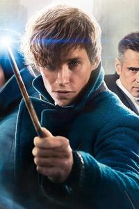 750x1334 Imax Fantastic Beasts And Where To Find Them