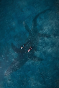 320x480 Jurassic World Fallen Kingdom Key Art 2018