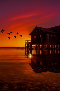 Lake House On Pier Birds Flying Sunset Scenery