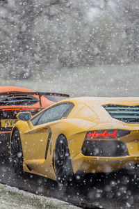 1080x1920 Lambos In The Snow