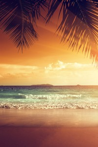 1440x2960 Landscape Beach Tropical Sun