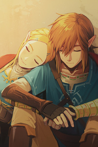Link And Zelda In The Legend Of Zelda Breath Of The Wild Game Artwork
